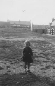Catbow 1953